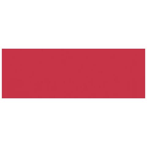 prozis-logo